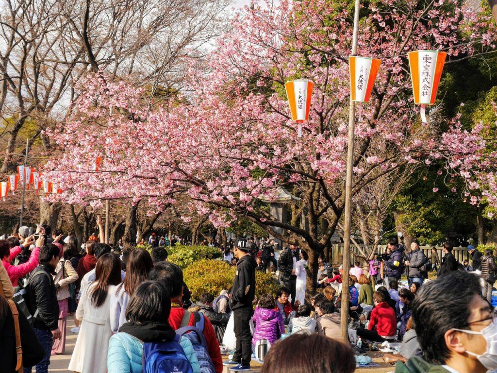 A lot of fun at Ueno Park
