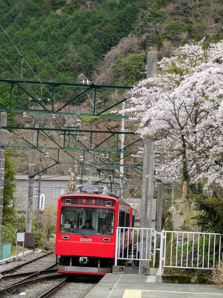 Local train at Hakone