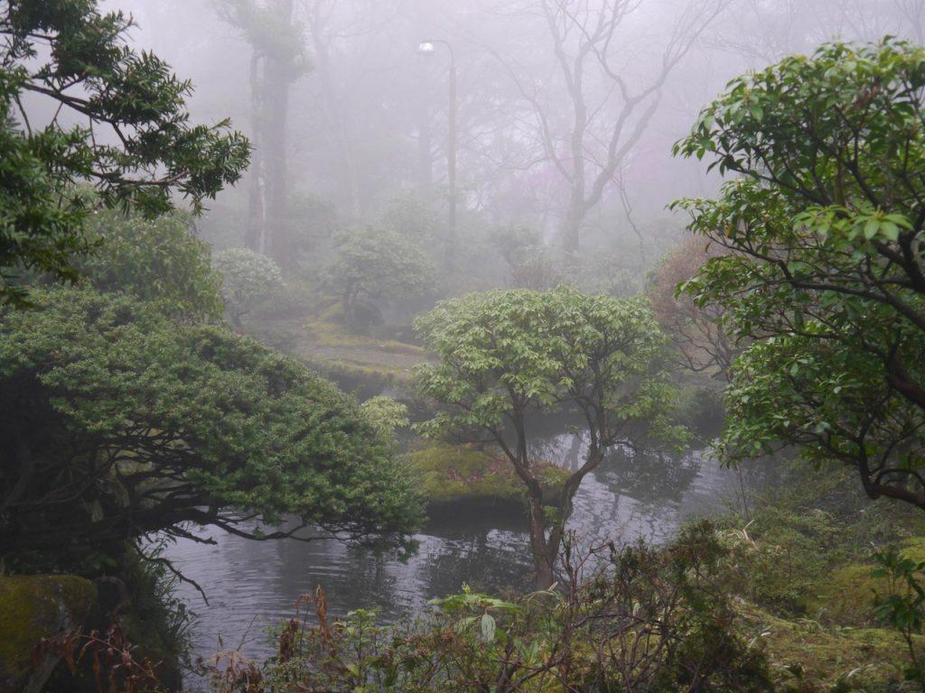 Eerie garden of Gora-Kansuiro