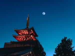 Moonlight and… sake! What is Tsukimi?