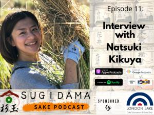 Through the time: the history of sake (Interview with Natsuki Kikuya)