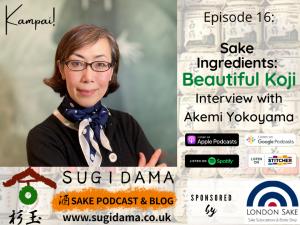 Sake Ingredients: Beautiful Koji (Interview with Akemi Yokoyama)